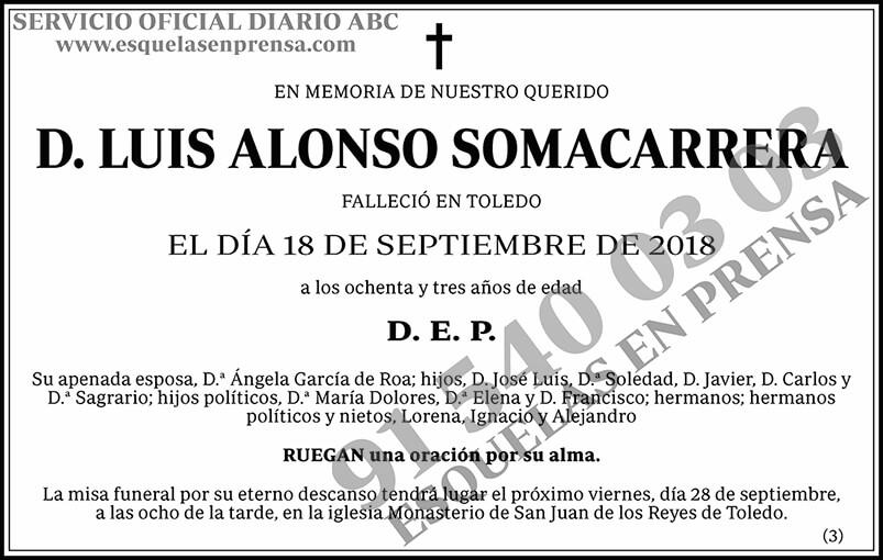Luis Alonso Somacarrera